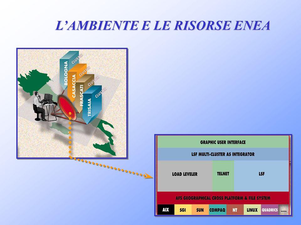 LAMBIENTE E LE RISORSE ENEA