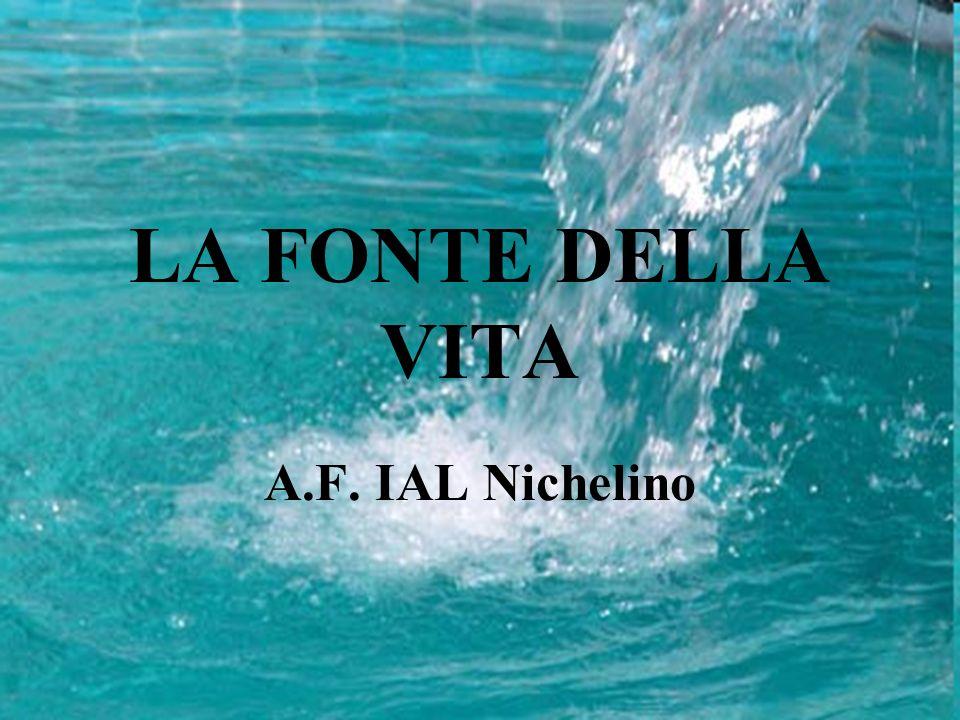 26 Maggio 2010 IIS J.C.Maxwell Nichelino Progetto H2Oplà Rete Nichelino 1 LA FONTE DELLA VITA A.F.