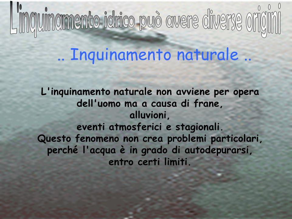 26 Maggio 2010 IIS J.C.Maxwell Nichelino Progetto H2Oplà Rete Nichelino 20..