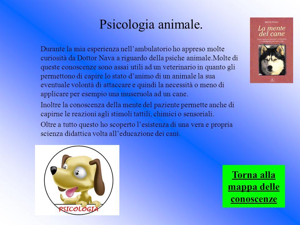 Psicologia animale. Durante la mia esperienza nellambulatorio ho appreso molte curiosità da Dottor Nava a riguardo della psiche animale.Molte di quest