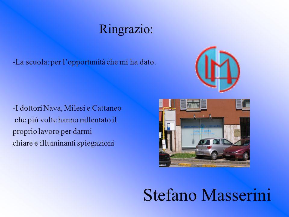 Stefano Masserini Ringrazio: -La scuola: per lopportunità che mi ha dato. -I dottori Nava, Milesi e Cattaneo che più volte hanno rallentato il proprio