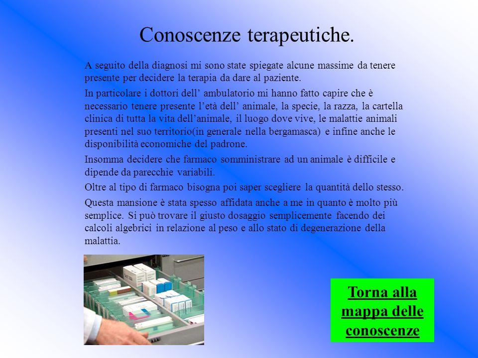 Stefano Masserini Ringrazio: -La scuola: per lopportunità che mi ha dato.