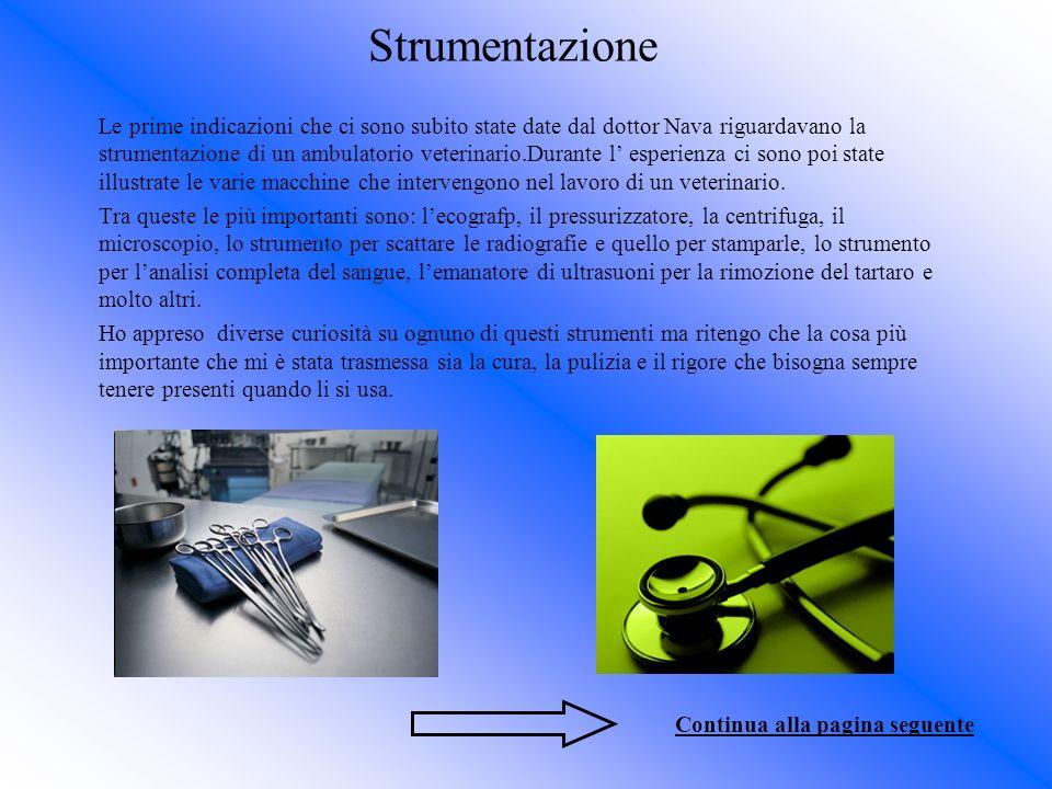 Strumentazione Le prime indicazioni che ci sono subito state date dal dottor Nava riguardavano la strumentazione di un ambulatorio veterinario.Durante