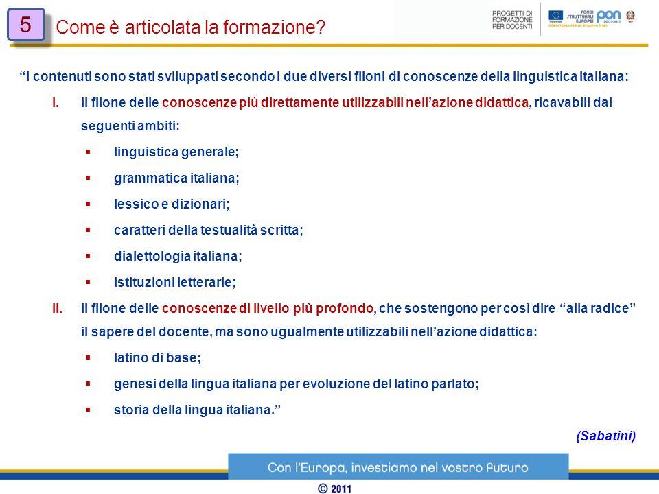 I contenuti sono stati sviluppati secondo i due diversi filoni di conoscenze della linguistica italiana: I. il filone delle conoscenze più direttament