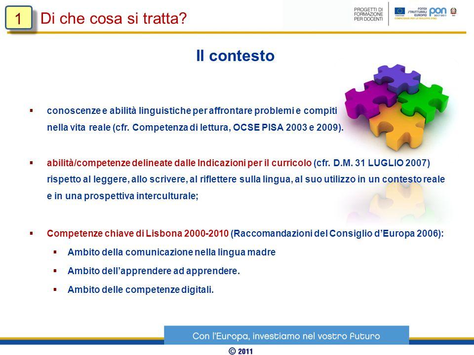 conoscenze e abilità linguistiche per affrontare problemi e compiti nella vita reale (cfr. Competenza di lettura, OCSE PISA 2003 e 2009). abilità/comp
