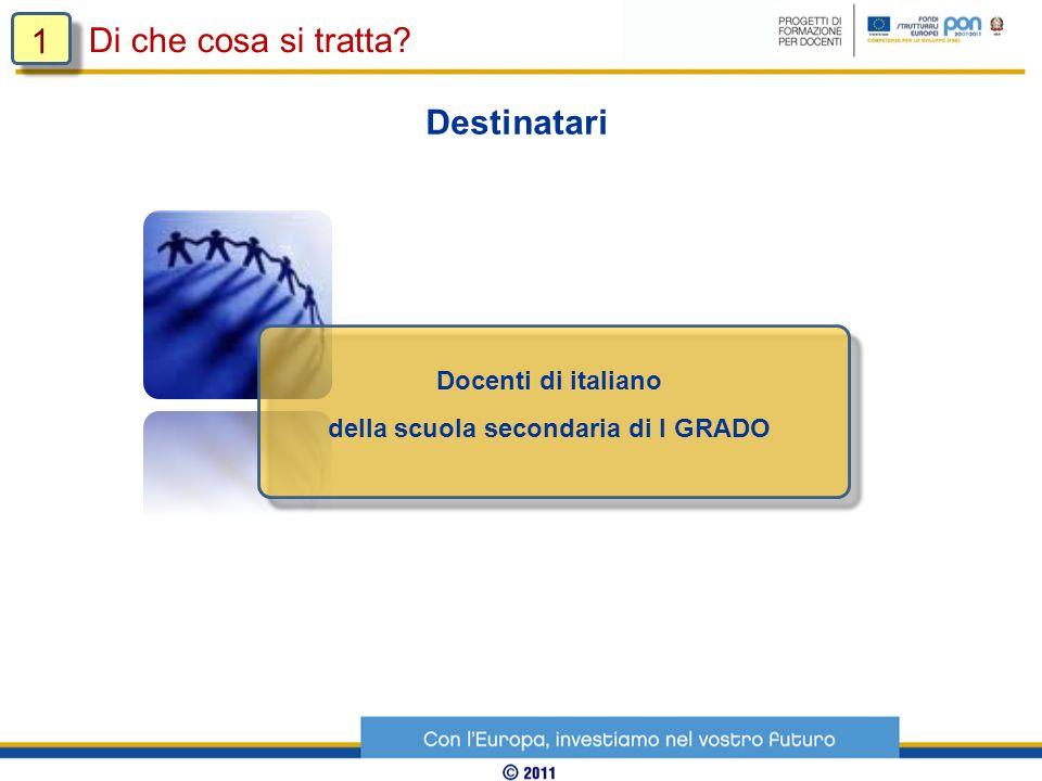 Il modello si basa sullintegrazione e la sinergia della formazione online con incontri in presenza (modalità blended).
