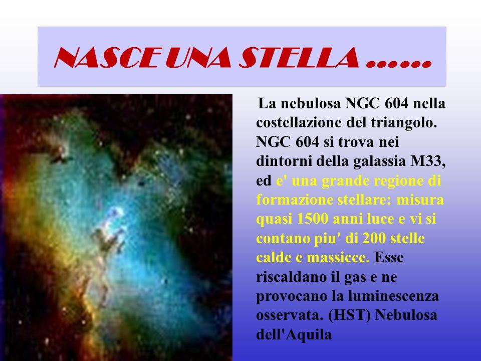 La nebulosa NGC 604 nella costellazione del triangolo. NGC 604 si trova nei dintorni della galassia M33, ed e' una grande regione di formazione stella