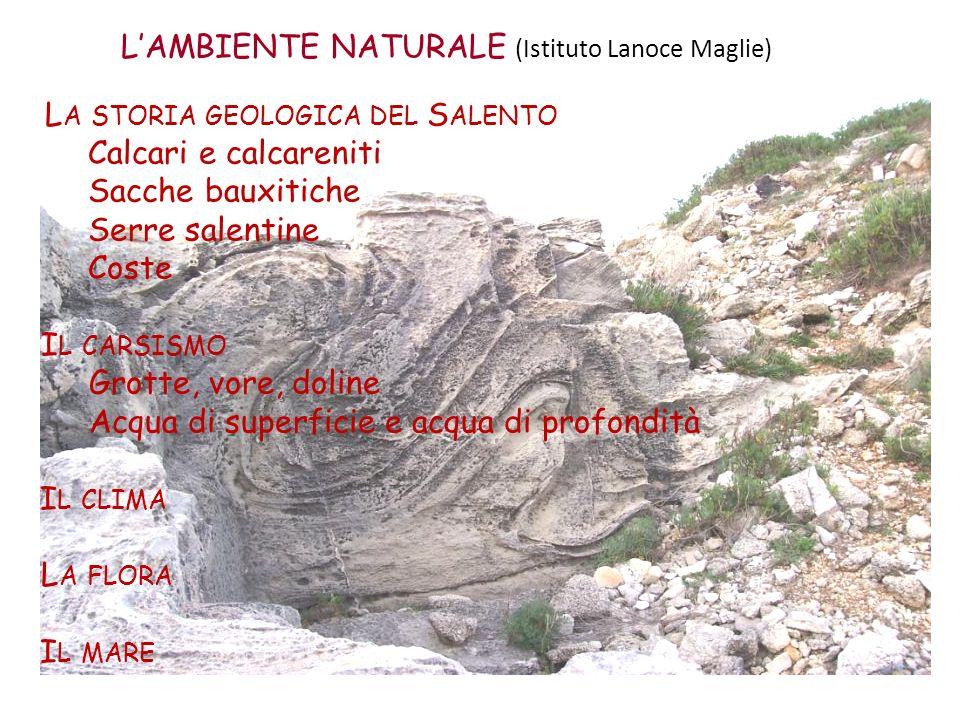 LAMBIENTE NATURALE (Istituto Lanoce Maglie) L A STORIA GEOLOGICA DEL S ALENTO Calcari e calcareniti Sacche bauxitiche Serre salentine Coste I L CARSIS