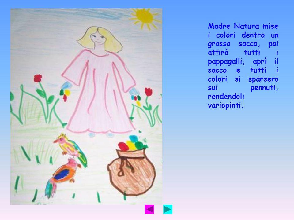 Madre Natura mise i colori dentro un grosso sacco, poi attirò tutti i pappagalli, aprì il sacco e tutti i colori si sparsero sui pennuti, rendendoli v