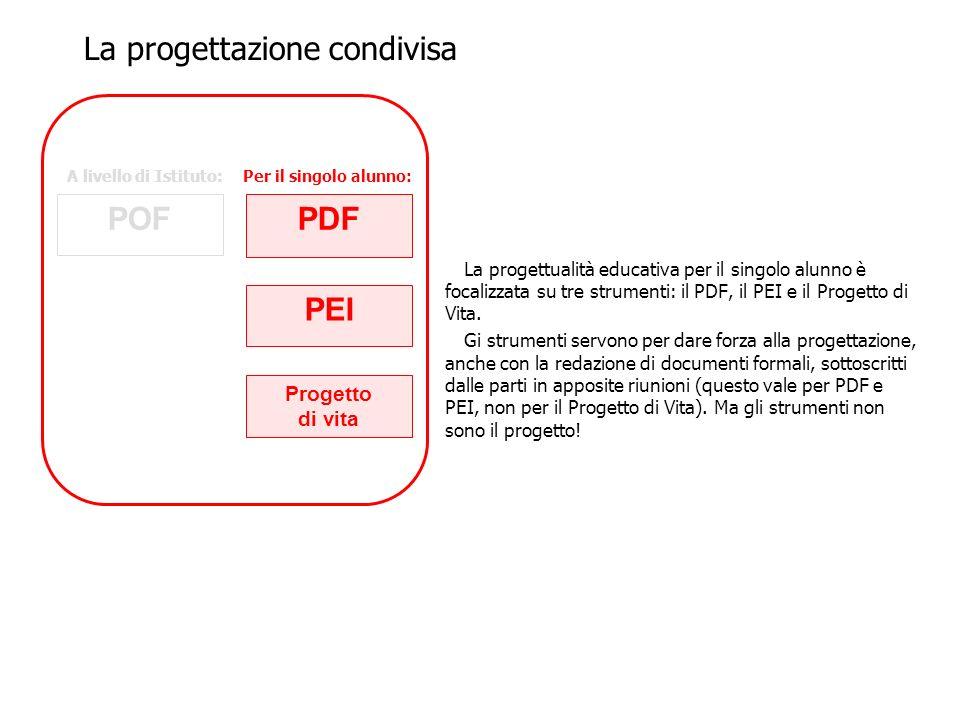 La progettualità educativa per il singolo alunno è focalizzata su tre strumenti: il PDF, il PEI e il Progetto di Vita. Gi strumenti servono per dare f