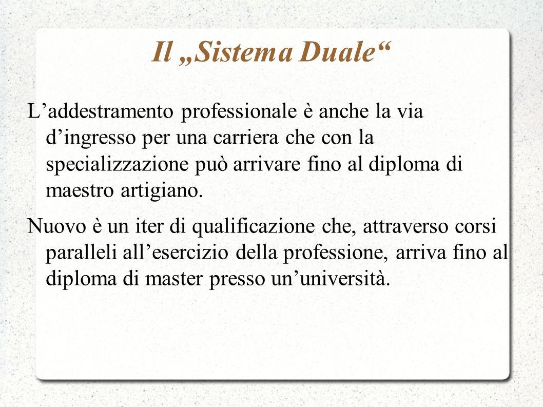 Il Sistema Duale Laddestramento professionale è anche la via dingresso per una carriera che con la specializzazione può arrivare fino al diploma di ma