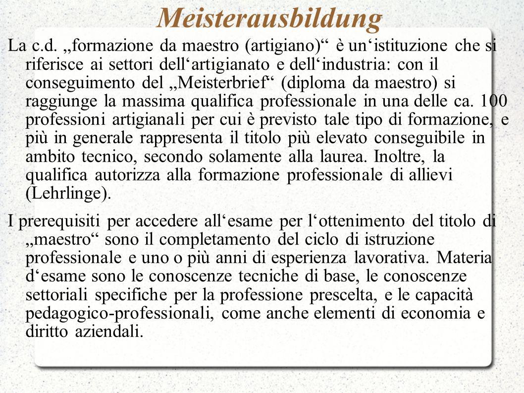 Meisterausbildung La c.d. formazione da maestro (artigiano) è unistituzione che si riferisce ai settori dellartigianato e dellindustria: con il conseg