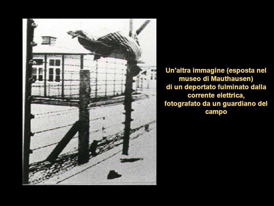 Immagine esposta nel museo di Mauthausen: un deportato fulminato dalla corrente elettrica. Si trattava di un tentativo di fuga o di un suicidio?