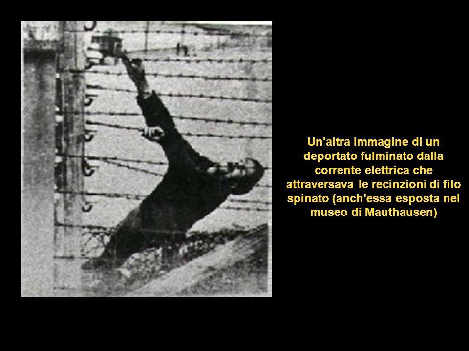 Un'altra immagine (esposta nel museo di Mauthausen) di un deportato fulminato dalla corrente elettrica, fotografato da un guardiano del campo