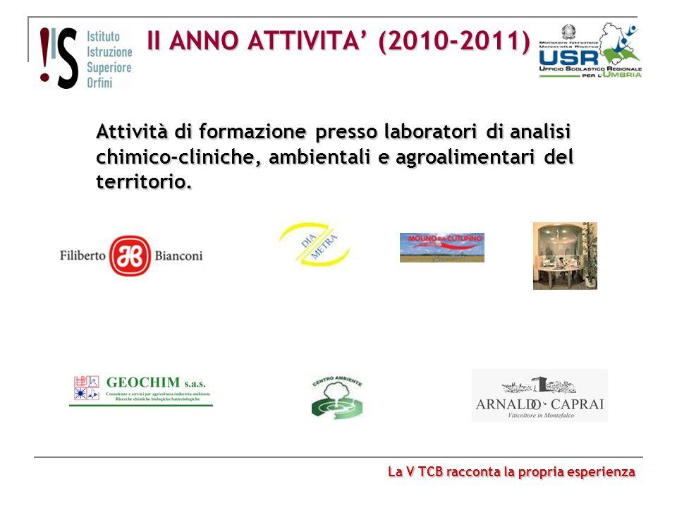 II ANNO ATTIVITA (2010-2011) Attività di formazione presso laboratori di analisi chimico-cliniche, ambientali e agroalimentari del territorio. La V TC