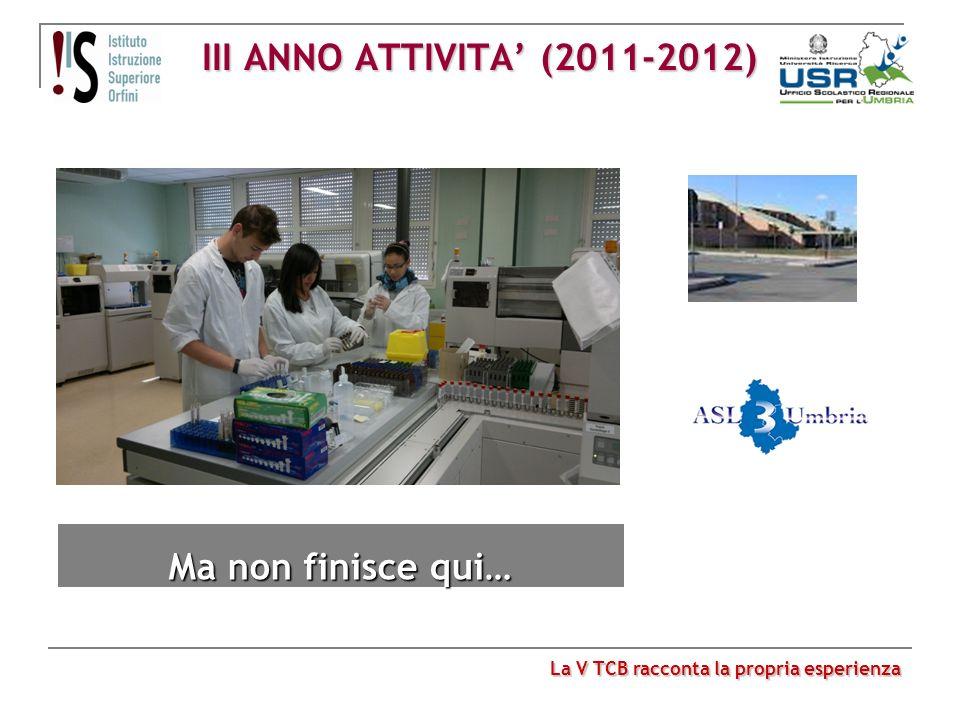 III ANNO ATTIVITA (2011-2012) La V TCB racconta la propria esperienza Ma non finisce qui…