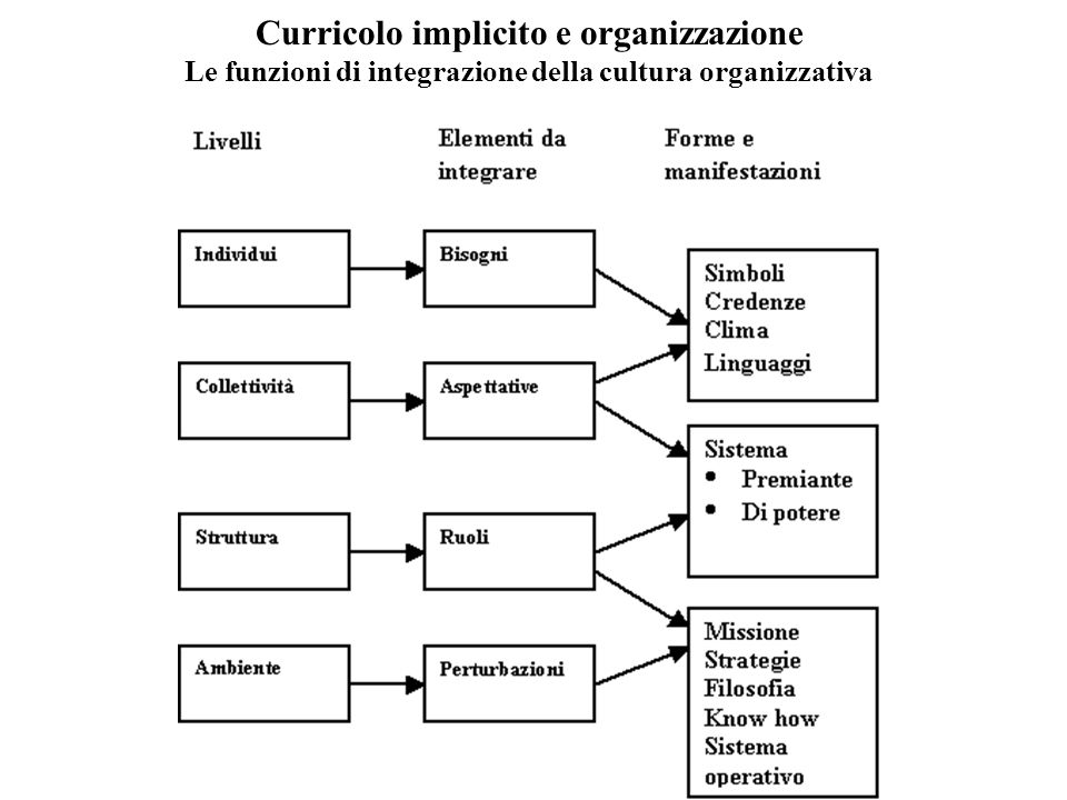 Curricolo implicito e organizzazione Le funzioni di integrazione della cultura organizzativa