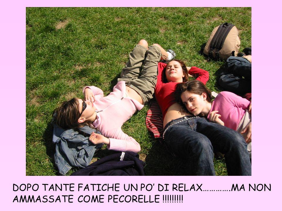 DOPO TANTE FATICHE UN PO DI RELAX………….MA NON AMMASSATE COME PECORELLE !!!!!!!!!