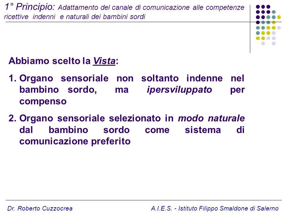 Dr. Roberto Cuzzocrea A.I.E.S. - Istituto Filippo Smaldone di Salerno Abbiamo scelto la Vista: 1.Organo sensoriale non soltanto indenne nel bambino so