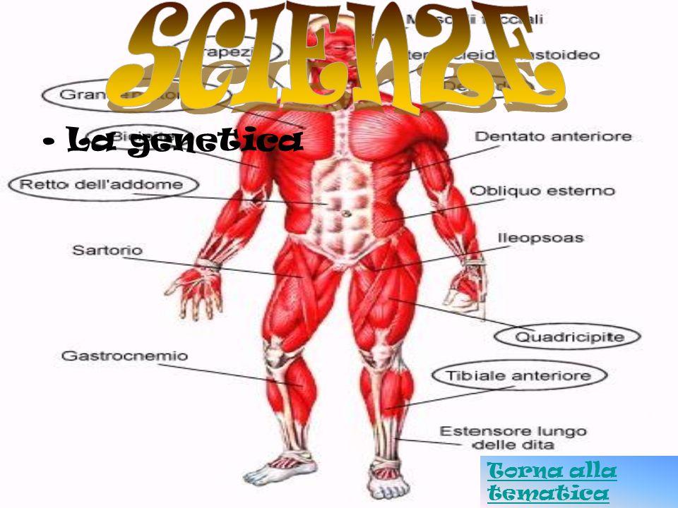 La genetica Torna alla tematica