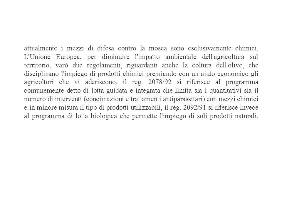 I NEMICI DELLOLIVO Il controllo dello stato sanitario dell'olivo è un'ulteriore condizione essenziale per garantire una buona produzione quali-quantit