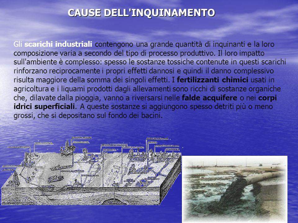 CAUSE DELL INQUINAMENTO Gli scarichi industriali contengono una grande quantità di inquinanti e la loro composizione varia a secondo del tipo di processo produttivo.