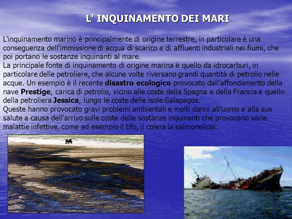 L INQUINAMENTO DEI MARI L inquinamento marino è principalmente di origine terrestre, in particolare è una conseguenza dell immissione di acqua di scarico e di affluenti industriali nei fiumi, che poi portano le sostanze inquinanti al mare.