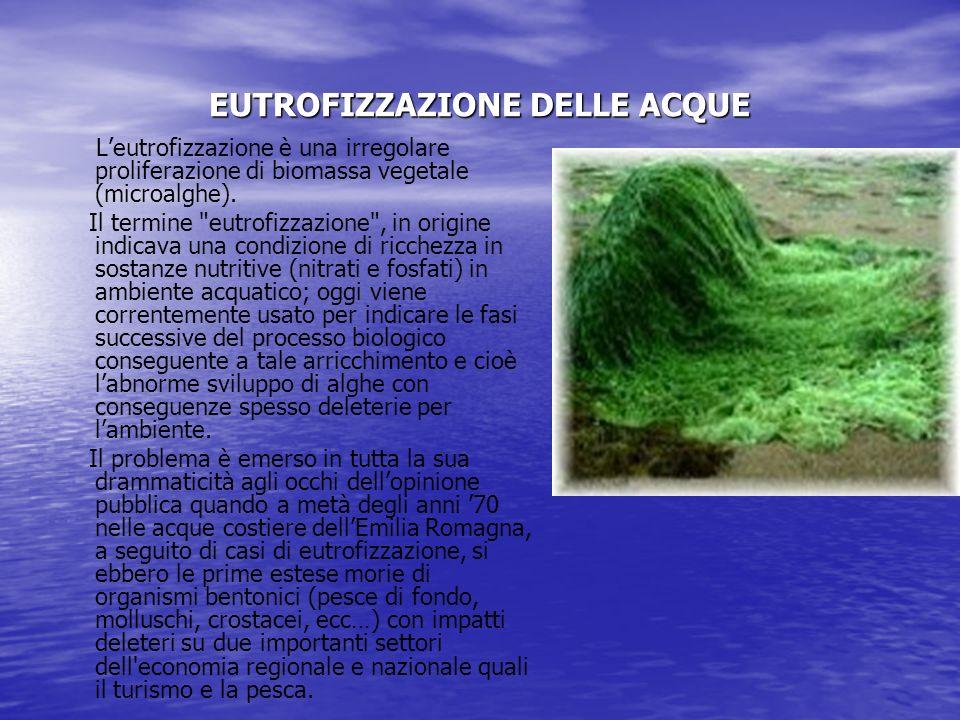 EUTROFIZZAZIONE DELLE ACQUE Leutrofizzazione è una irregolare proliferazione di biomassa vegetale (microalghe).