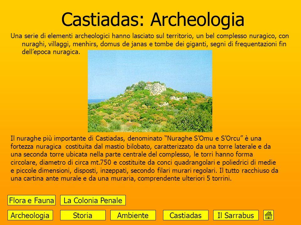 Castiadas: Archeologia Una serie di elementi archeologici hanno lasciato sul territorio, un bel complesso nuragico, con nuraghi, villaggi, menhirs, do