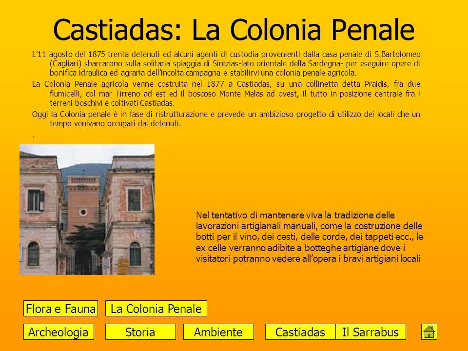 Castiadas: La Colonia Penale L11 agosto del 1875 trenta detenuti ed alcuni agenti di custodia provenienti dalla casa penale di S.Bartolomeo (Cagliari)