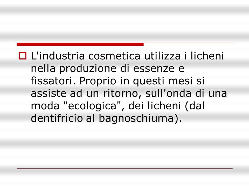 L'industria cosmetica utilizza i licheni nella produzione di essenze e fissatori. Proprio in questi mesi si assiste ad un ritorno, sull'onda di una mo