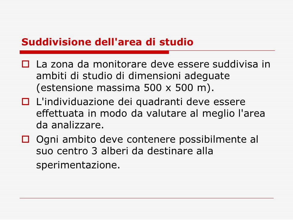 Suddivisione dell'area di studio La zona da monitorare deve essere suddivisa in ambiti di studio di dimensioni adeguate (estensione massima 500 x 500