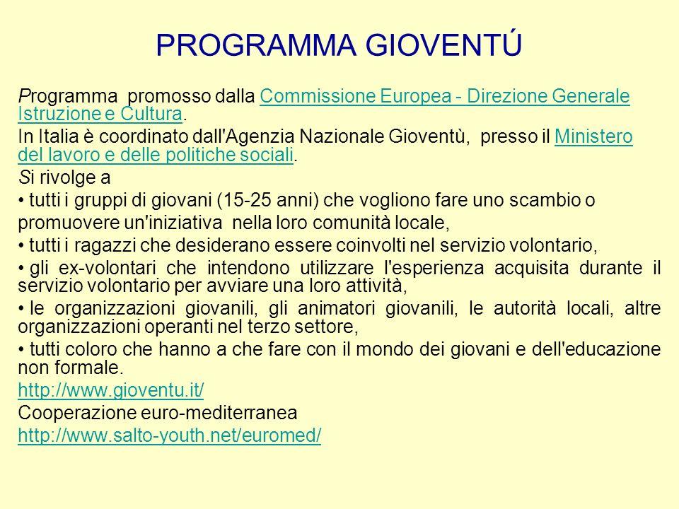 PROGRAMMA GIOVENTÚ Programma promosso dalla Commissione Europea - Direzione Generale Istruzione e Cultura.Commissione Europea - Direzione Generale Ist
