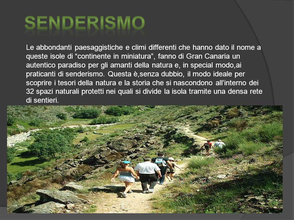 Le abbondanti paesaggistiche e climi differenti che hanno dato il nome a queste isole di continente in miniatura, fanno di Gran Canaria un autentico paradiso per gli amanti della natura e, in special modo,ai praticanti di senderismo.