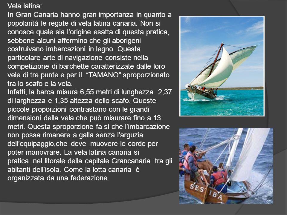 Vela latina: In Gran Canaria hanno gran importanza in quanto a popolarità le regate di vela latina canaria.