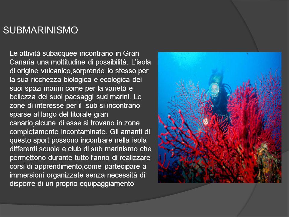 SUBMARINISMO Le attività subacquee incontrano in Gran Canaria una moltitudine di possibilità.