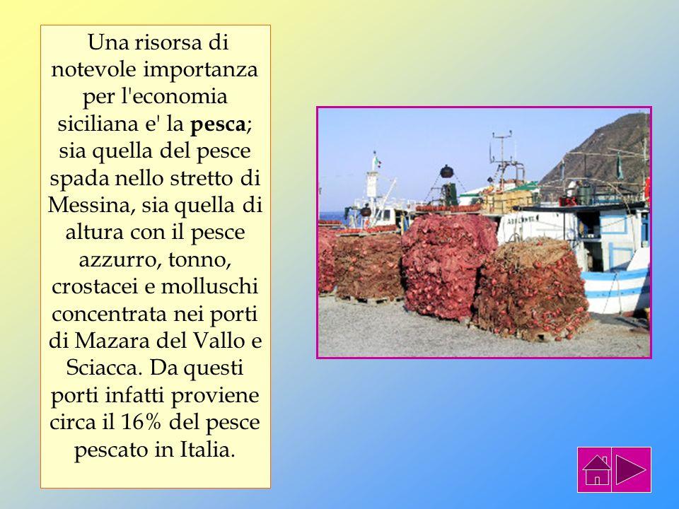 L ECONOMIA L'agricoltura e' sviluppata nella maggior parte nelle pianure costiere. I prodotti principali che si coltivano sono: grano e cereali in gen