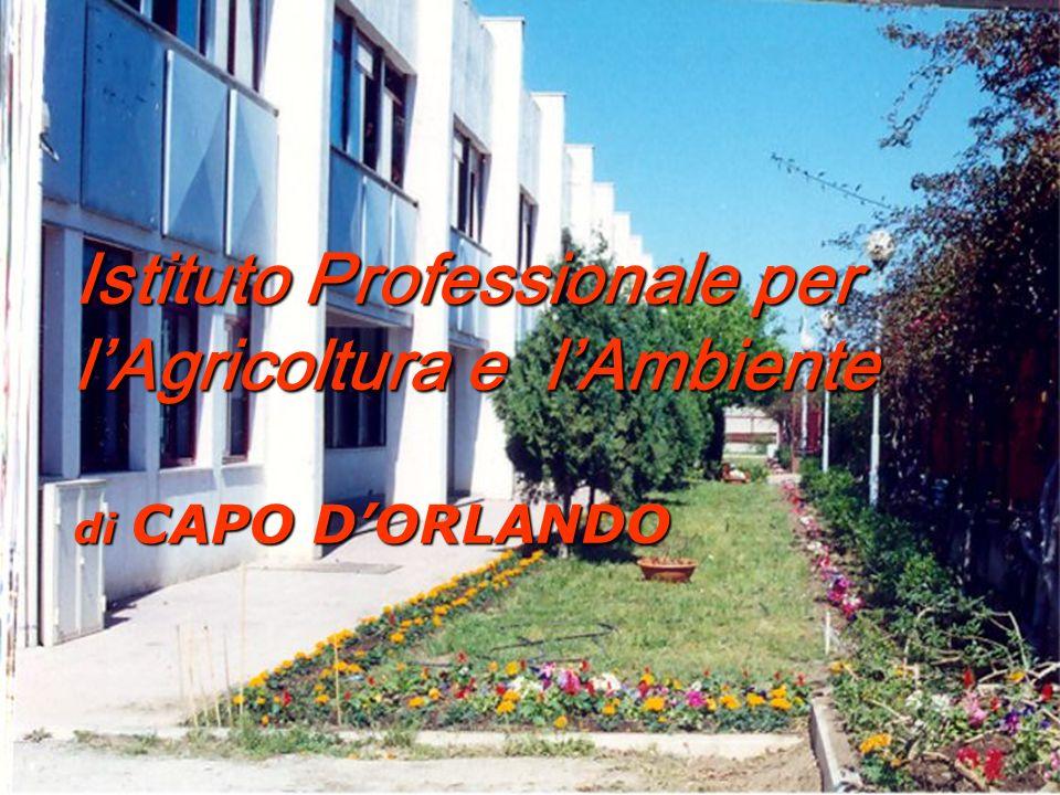 Istituto Professionale per lAgricoltura e lAmbiente di CAPO DORLANDO