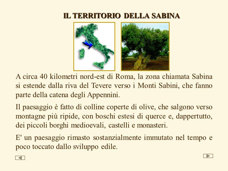 A circa 40 kilometri nord-est di Roma, la zona chiamata Sabina si estende dalla riva del Tevere verso i Monti Sabini, che fanno parte della catena degli Appennini.