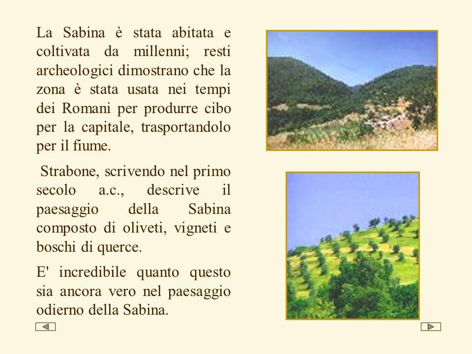 La Sabina è stata abitata e coltivata da millenni; resti archeologici dimostrano che la zona è stata usata nei tempi dei Romani per produrre cibo per