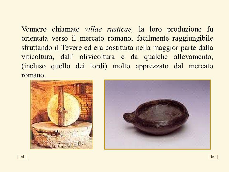 Vennero chiamate villae rusticae, la loro produzione fu orientata verso il mercato romano, facilmente raggiungibile sfruttando il Tevere ed era costit