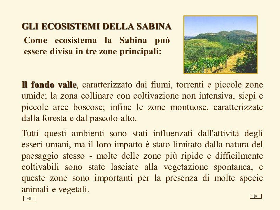 Il fondo valle Il fondo valle, caratterizzato dai fiumi, torrenti e piccole zone umide; la zona collinare con coltivazione non intensiva, siepi e piccole aree boscose; infine le zone montuose, caratterizzate dalla foresta e dal pascolo alto.