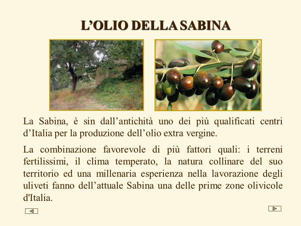 La Sabina, è sin dallantichità uno dei più qualificati centri dItalia per la produzione dellolio extra vergine. La combinazione favorevole di più fatt