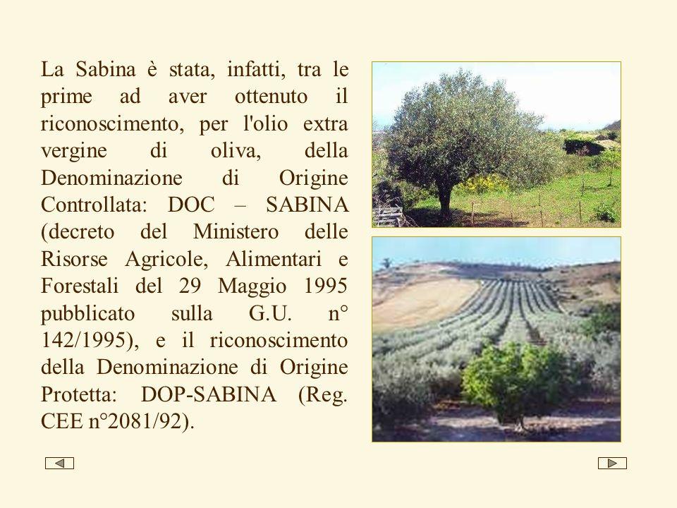 La Sabina è stata, infatti, tra le prime ad aver ottenuto il riconoscimento, per l olio extra vergine di oliva, della Denominazione di Origine Controllata: DOC – SABINA (decreto del Ministero delle Risorse Agricole, Alimentari e Forestali del 29 Maggio 1995 pubblicato sulla G.U.