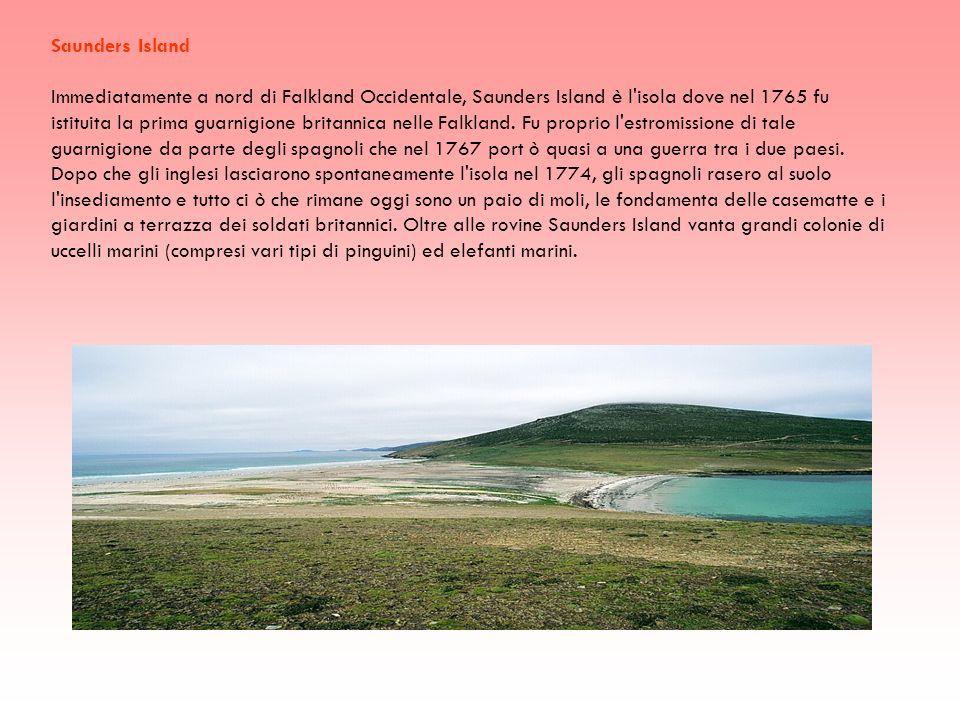 Saunders Island Immediatamente a nord di Falkland Occidentale, Saunders Island è l'isola dove nel 1765 fu istituita la prima guarnigione britannica ne