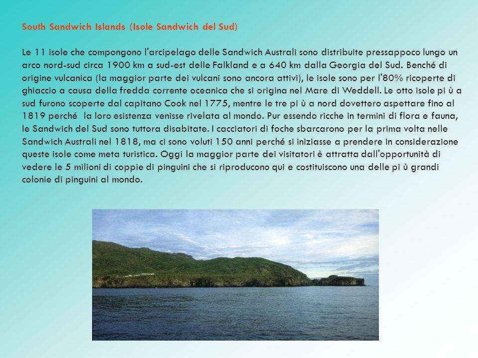 South Sandwich Islands (Isole Sandwich del Sud) Le 11 isole che compongono l'arcipelago delle Sandwich Australi sono distribuite pressappoco lungo un