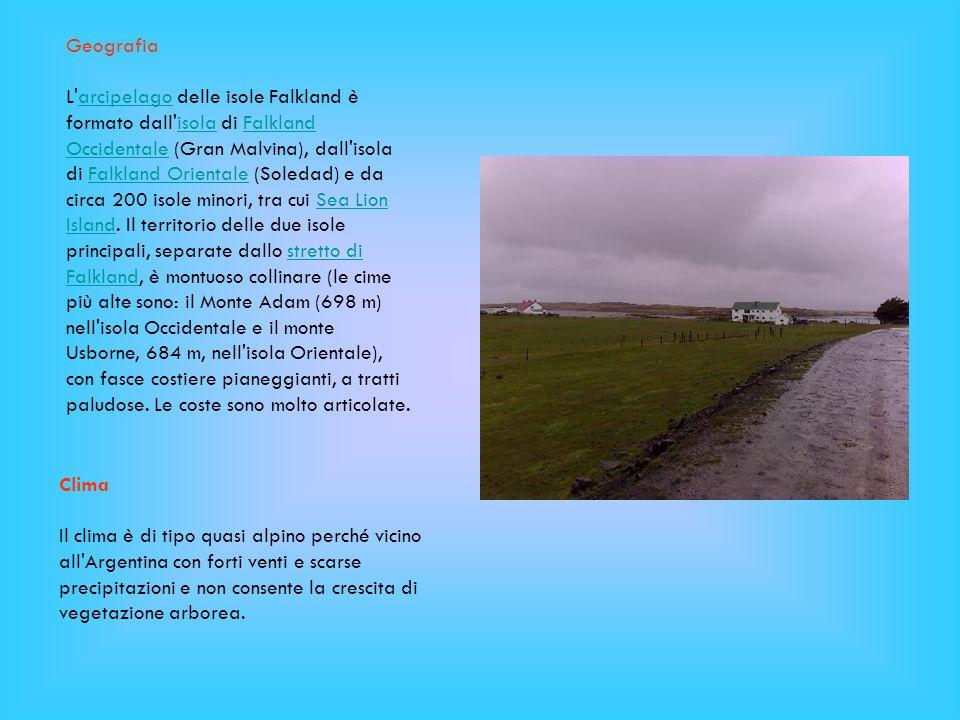 Geografia L'arcipelago delle isole Falkland è formato dall'isola di Falkland Occidentale (Gran Malvina), dall'isola di Falkland Orientale (Soledad) e