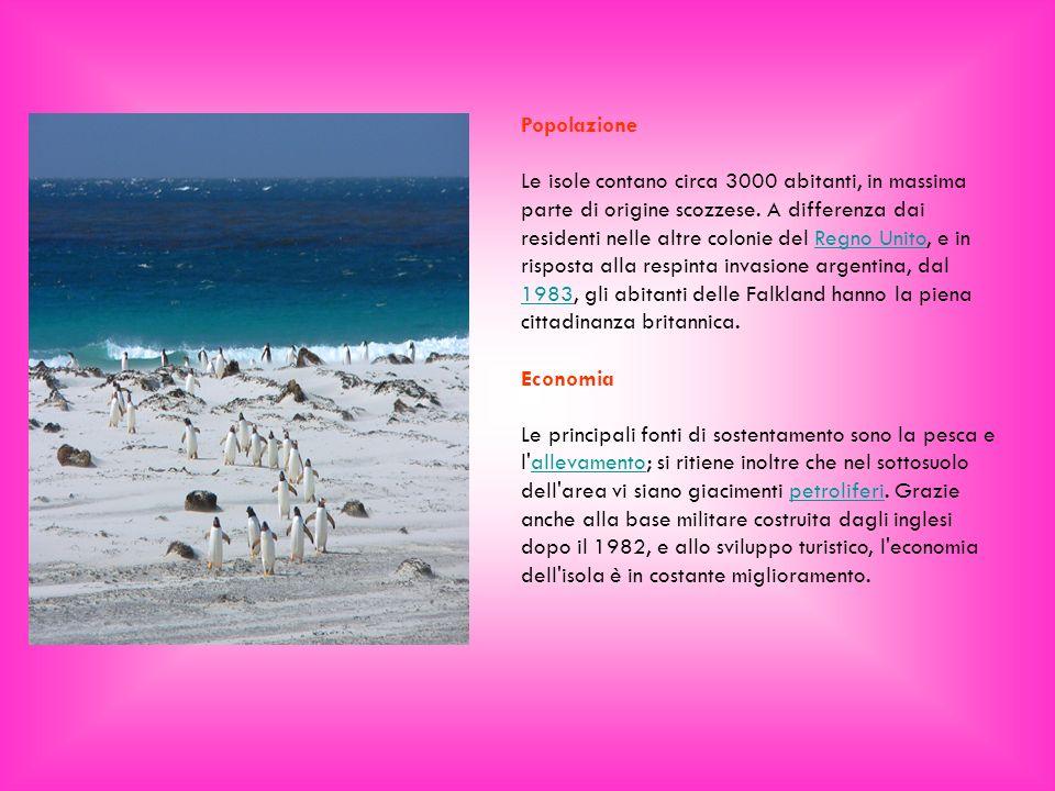 ATTRAZIONI La fauna locale è la principale attrattiva delle Falkland, ma gli osservatori dovrebbero mantenersi a una certa distanza, anche se molti uccelli e mammiferi marini che vivono nelle isole sono relativamente mansueti.