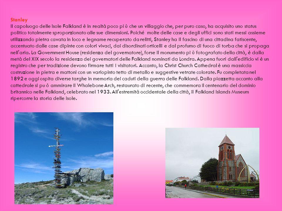 Stanley Il capoluogo delle Isole Falkland è in realtà poco pi ù che un villaggio che, per puro caso, ha acquisito uno status politico totalmente sprop