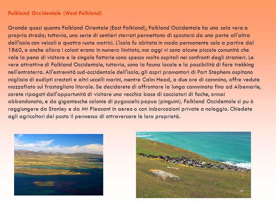 Falkland Occidentale (West Falkland) Grande quasi quanto Falkland Orientale (East Falkland), Falkland Occidentale ha una sola vera e propria strada; t